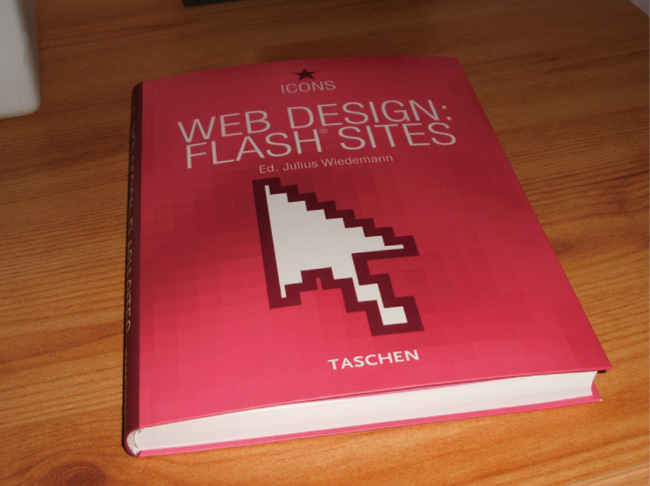 WEB DESIGN FLASH SITE